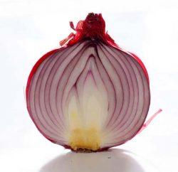 murasaki1